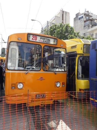 Ziu No3077